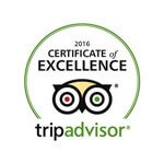 excellence certificate tripadvisor 2016